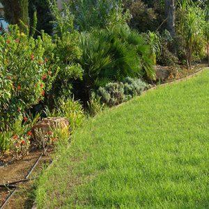 ландшафтно озеленяване