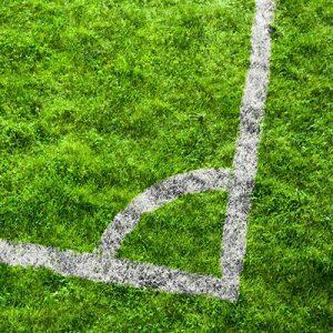 Естествена трева